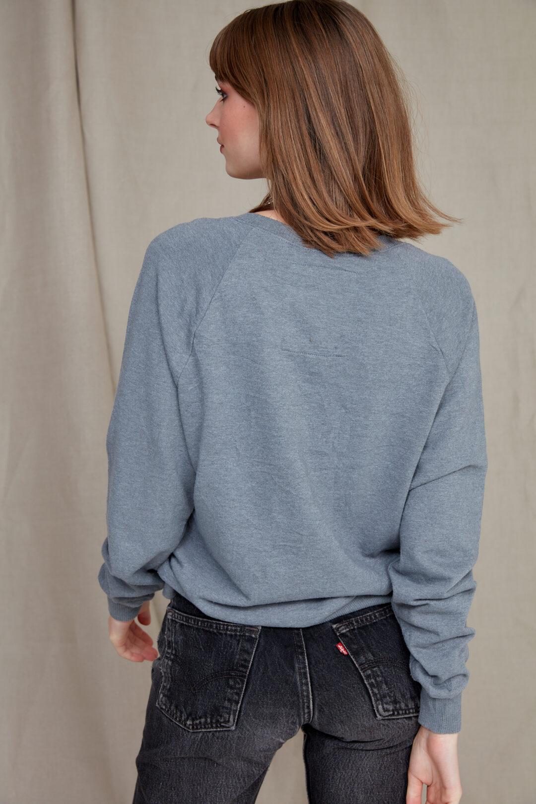 collect23 disney sweatshirt